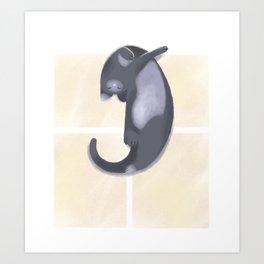 Sunbathing Cat Art Print