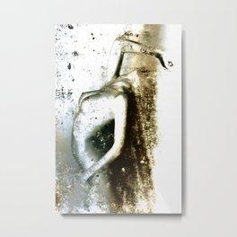 ZORN Metal Print