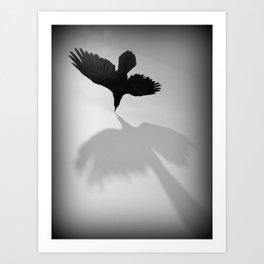 Raven Shadow Art Print