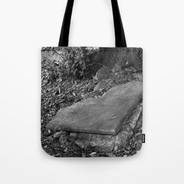 broken old grave on the green Tote Bag