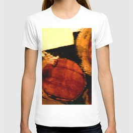 ONE and a HALF CORKS T-shirt