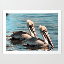 Pelican Love Art Print