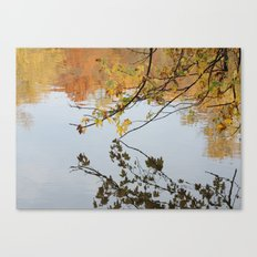 The River During Fall Canvas Print