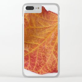 Fall Leaf Clear iPhone Case