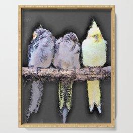 Sleepy Parakeets Sharing a Perch Serving Tray
