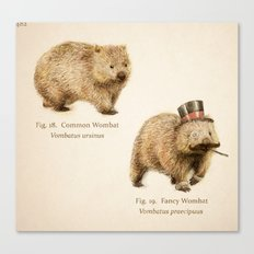 The Fancy Wombat Canvas Print
