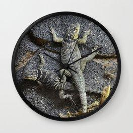 Desert lizards.... Wall Clock
