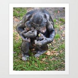 Bonobo Family Moment Art Print
