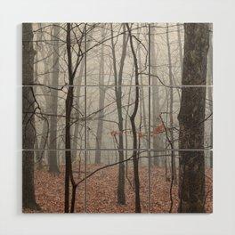 Woods on a Foggy Sunday Stroll Wood Wall Art