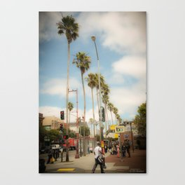 sf palm trees Canvas Print