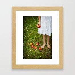 Red Apples Framed Art Print