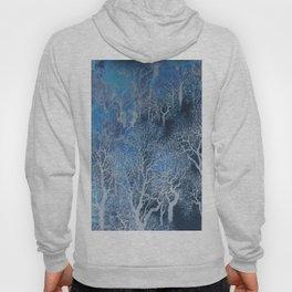Blue winter forest Hoody
