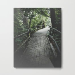 I Know The Old You, And You Know The Old Me Metal Print