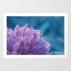 the soft blossom Art Print