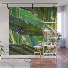 Guardian of the plants Wall Mural