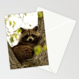 Happy in her hideout Stationery Cards