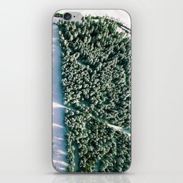 Trees below iPhone Skin