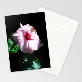 Working Stationery Cards