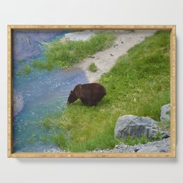 Glacier fed - bear approved Serving Tray