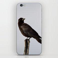 Standing Tall iPhone & iPod Skin