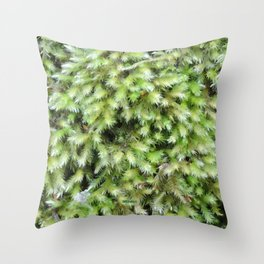 TEXTURES -- Moss on a Tree Trunk Throw Pillow