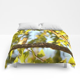 Songbird Singing On The Branch  #decor #society6 Comforters