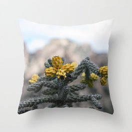 Staghorn at Cochise Throw Pillow