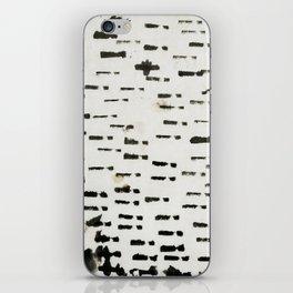 wabi sabi 16-01 iPhone Skin