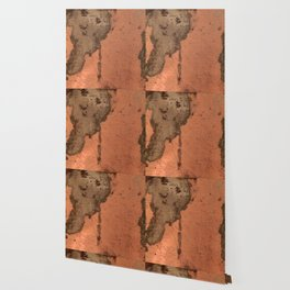 Tarnished Copper rustic decor Wallpaper