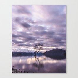 That Wanaka Tree by moonlight. Canvas Print