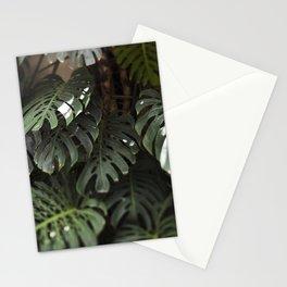 Monstera - botanical photography Stationery Cards
