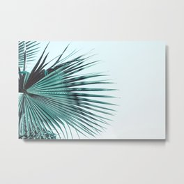 Branches of palm tree Metal Print