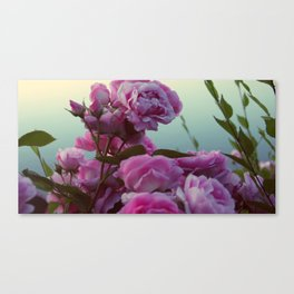 Roses by the lake #society6 Canvas Print