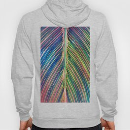 503 - Canna Leaf Abstract Hoody