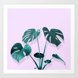 Monstera Palm on Musk Art Print
