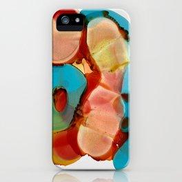 cinderella's glass slipper iPhone Case