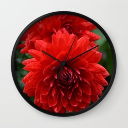Fresh Rain Drops - Red Dahlia Wall Clock