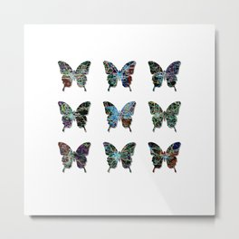 Butterfly collection usa o4 Metal Print