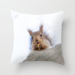 Squirrel with a walnut Throw Pillow