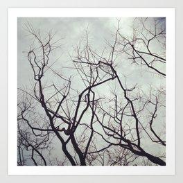 sticks in the gloom Art Print