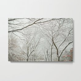 Snowy trees in Montreal Metal Print