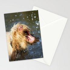 Make a BIG Splash Stationery Cards