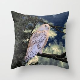 Snowy Owl Bird Stormy Sky A127 Throw Pillow