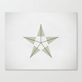 Star Lake Canvas Print