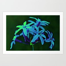 Groovy flower Art Print