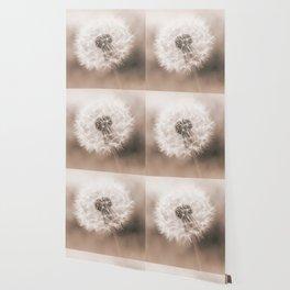 Spring Dandelion in Sepia Wallpaper