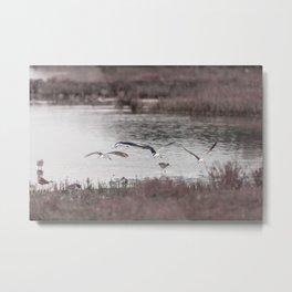 Birds Taking Flight | Wildlife Photography Metal Print