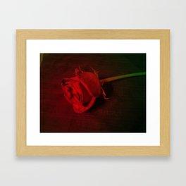 Rose #5 Framed Art Print