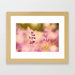 Let the sun soak in Framed Art Print
