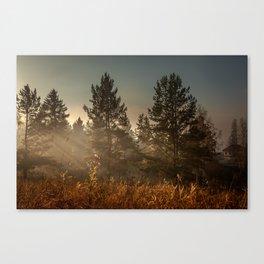 Autumn sun beam Canvas Print